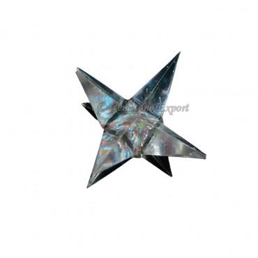 Chakra Stone Big Point Star